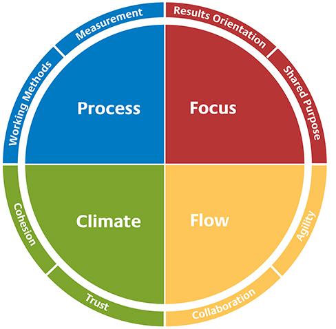 Insights Discovery Team Effectiveness Pillars
